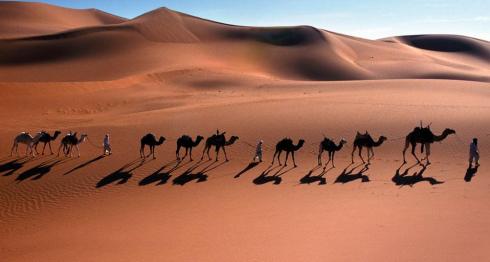 CamelCaravan_FR-FR1725133123